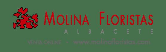 Molina Floristas