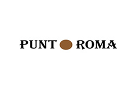 logo `punto roma
